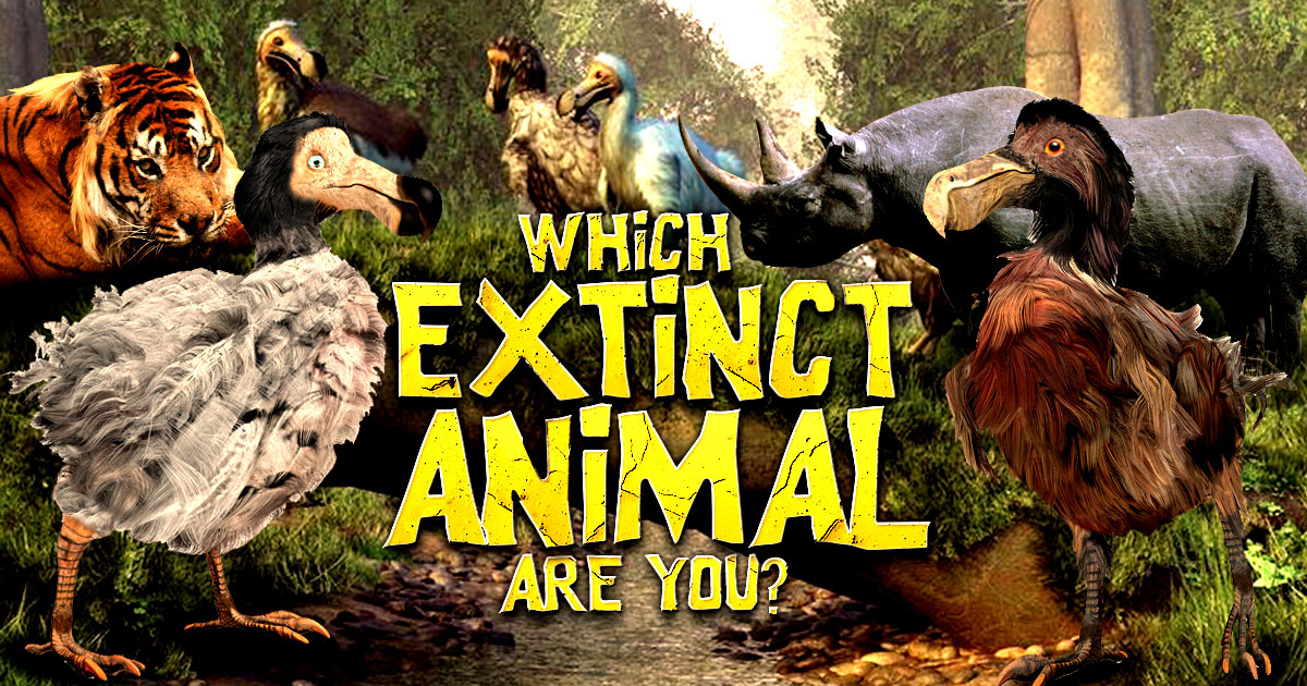 Which extinct animal are you?